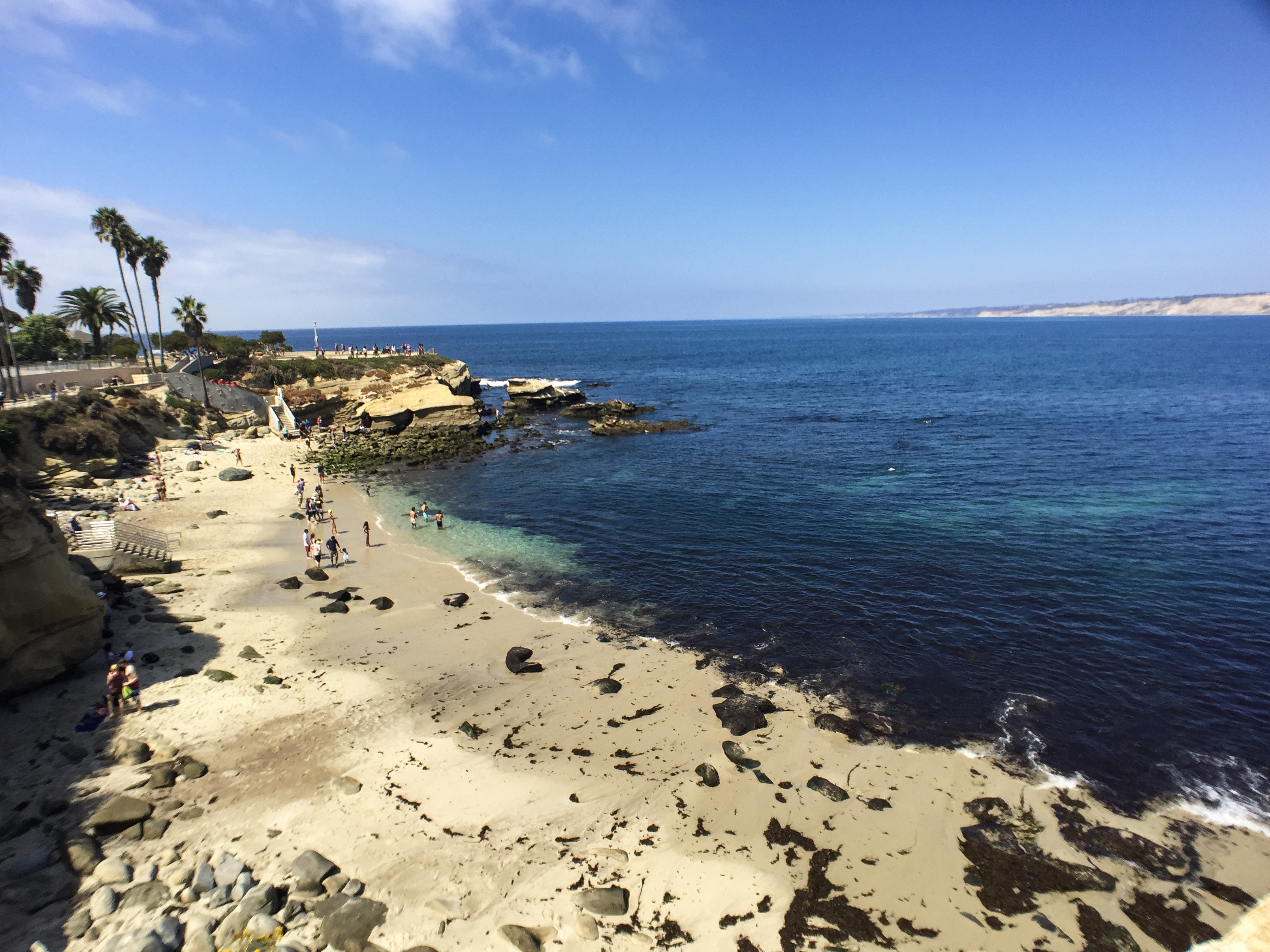 Exploring The Best Of La Jolla California Traveling Ness